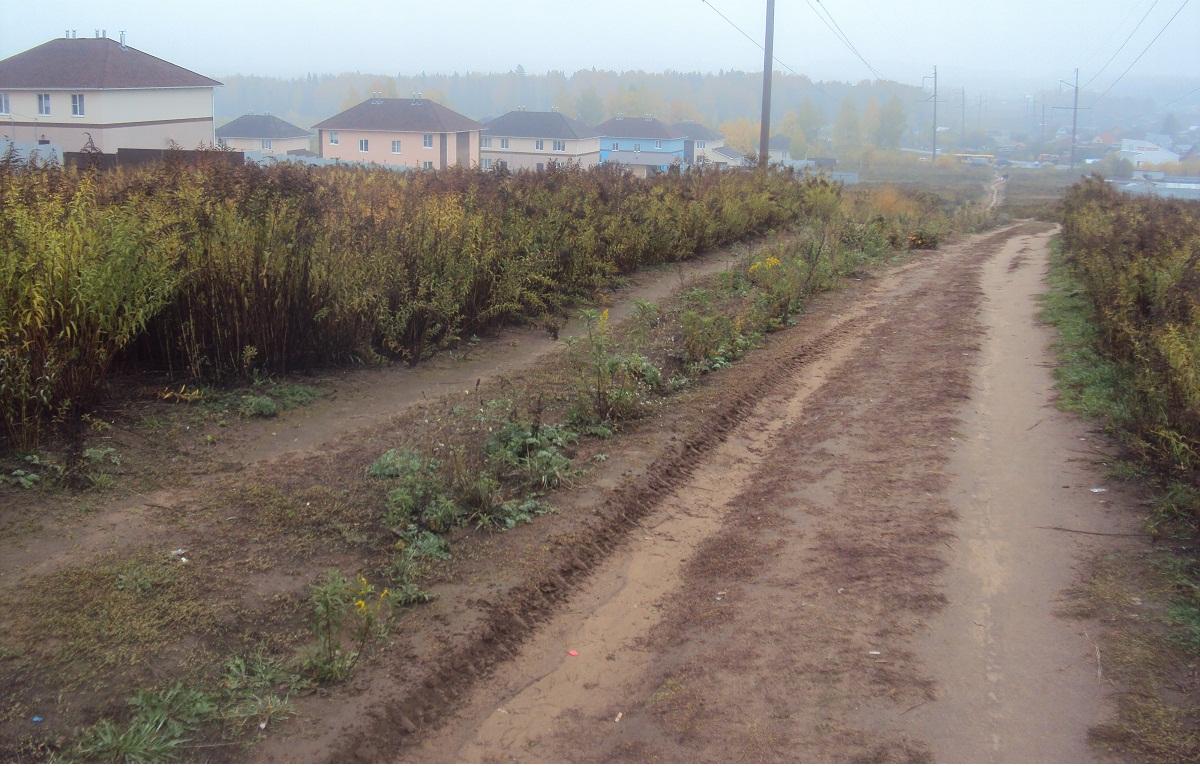 Дороги в Сосновом