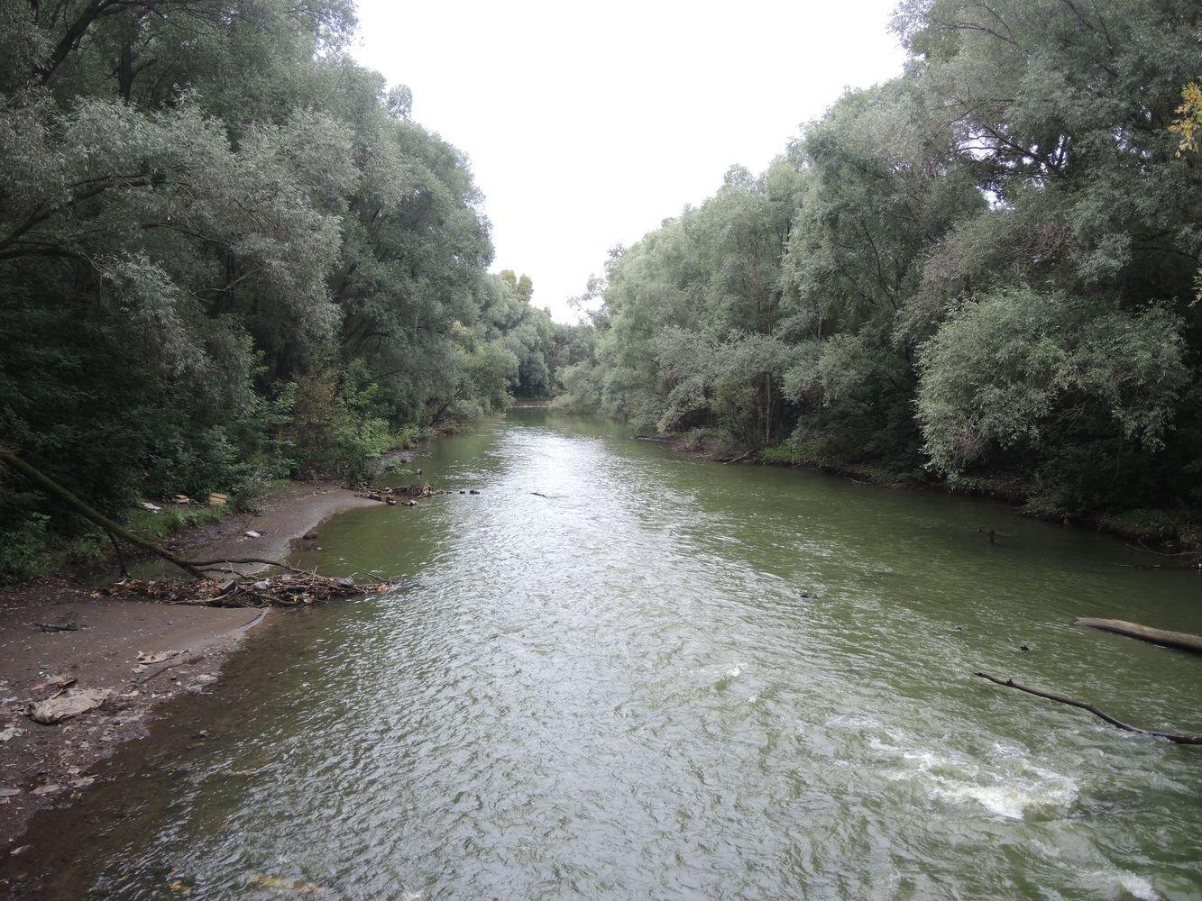 Река Иж. Фото ©День.org