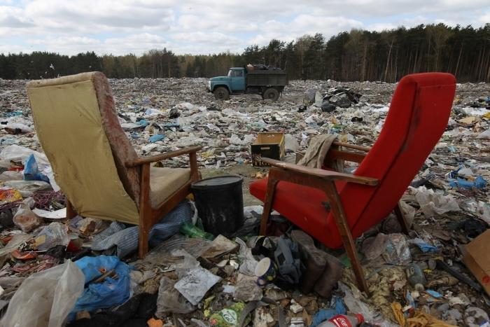 На свалках свое правительство. Фото: tobolsk.ru