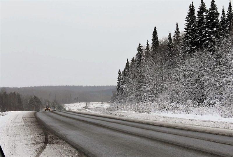 Фото: svinoyrsk.ru