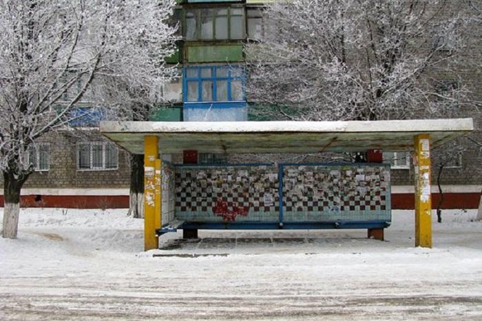 Фото: www.amur.kp.ru