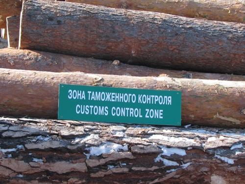 Лес вместо нефти? Фото: lesvesti.ru