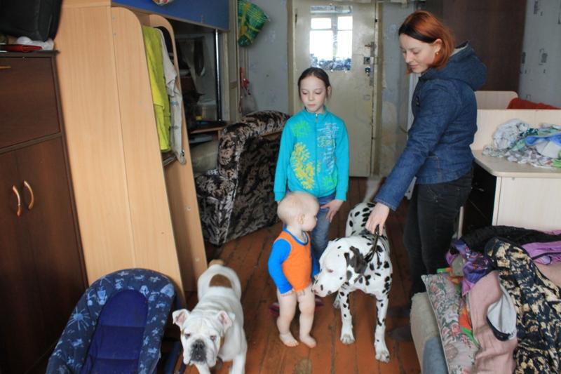 Ижевчанка Ирина живет в комнате с мужем, детьми, двумя собаками и кошкой. Фото: © «ДЕНЬ.org»