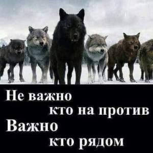Картинка, распространённая на странице судьи Александры Хиталенко в социальной сети «Фейсбук».
