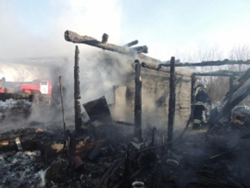 Фото: пресс-служба МЧС по Удмуртии