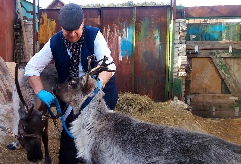 Фото: пресс-служба ГУ ветеринарии по Удмуртии