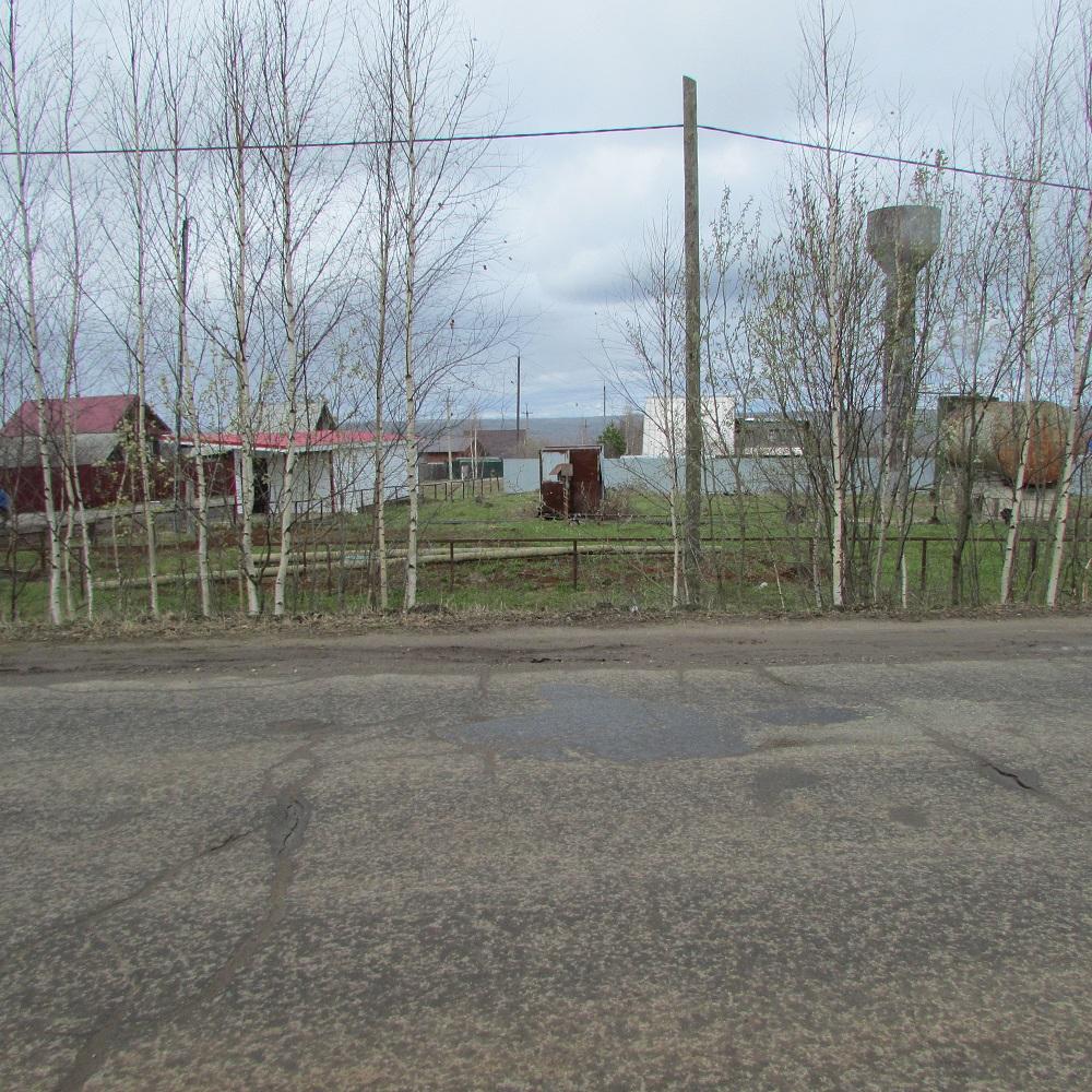Магазин, он же остановочный комплекс, находится в нескольких метрах от дороги.