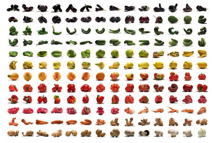 Ули Вестфамль: «Полное отсутствие ботанических аномалий в наших супермаркетах заставило нас думать, что такими должны быть все овощи и фрукты. Но это не так».