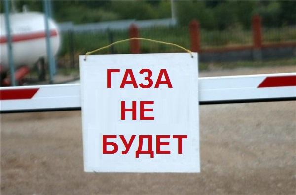 Фото: gushrustalniy.bezform