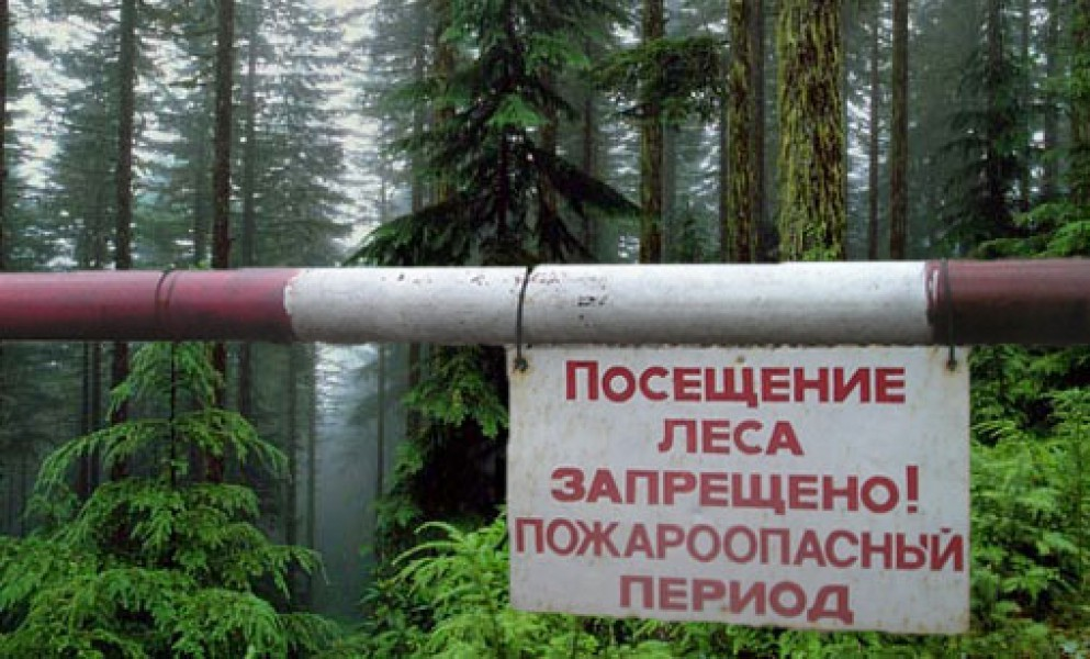 Фото: 63.fair.ru