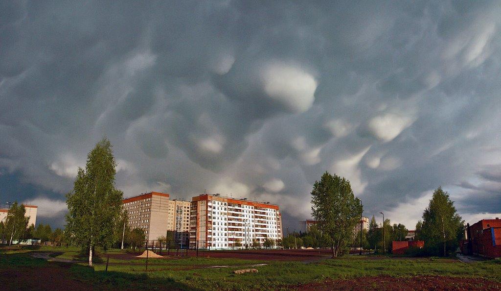 Фото: images.esosedi.ru
