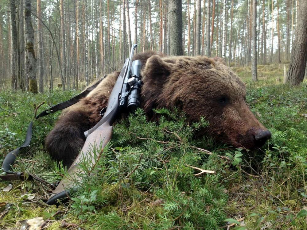 Фото: hunting.ru