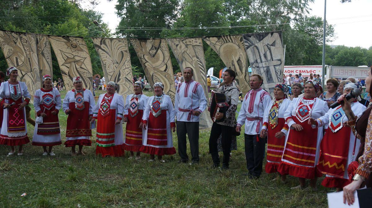 Гербер. Фото: © «ДЕНЬ.org»