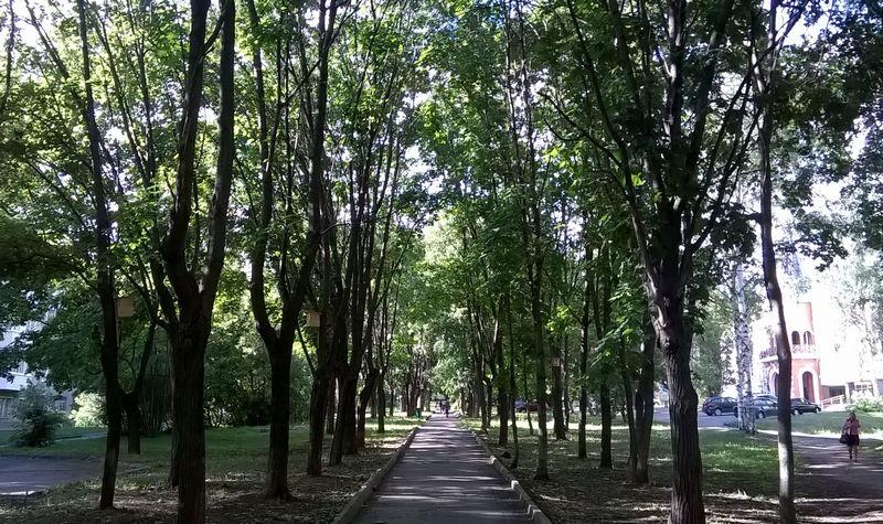 Бульвар Гоголя в центре Ижевска.
