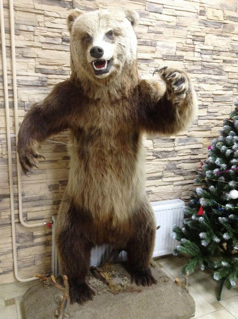 Тот самый манекен медведя.