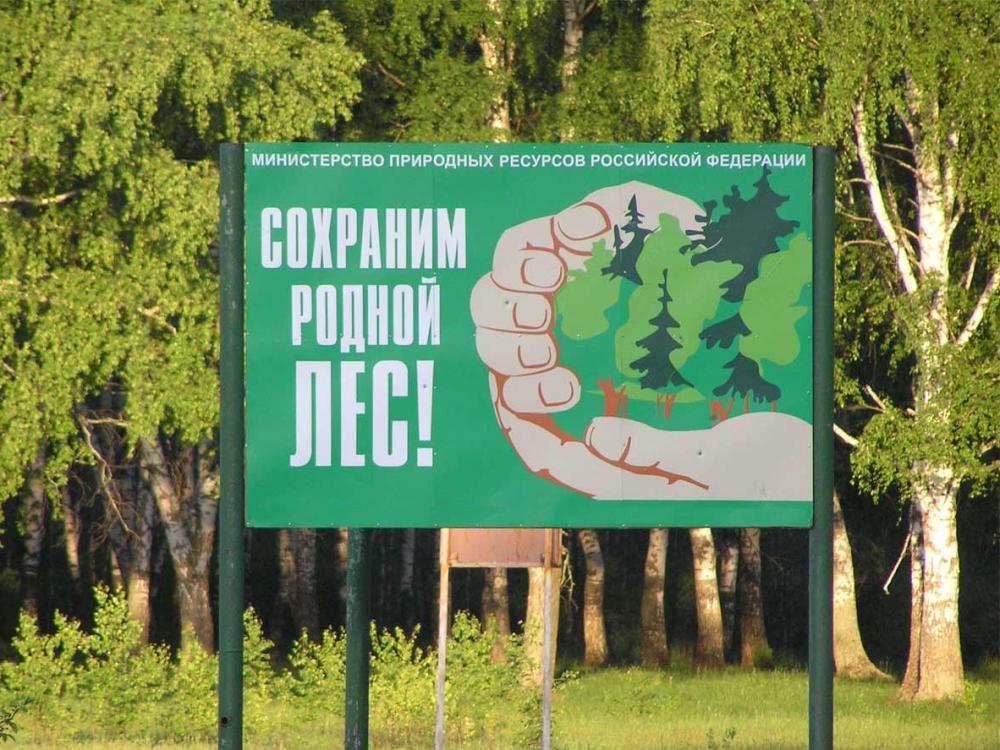 Фото: kamenka.pnzreg.ru