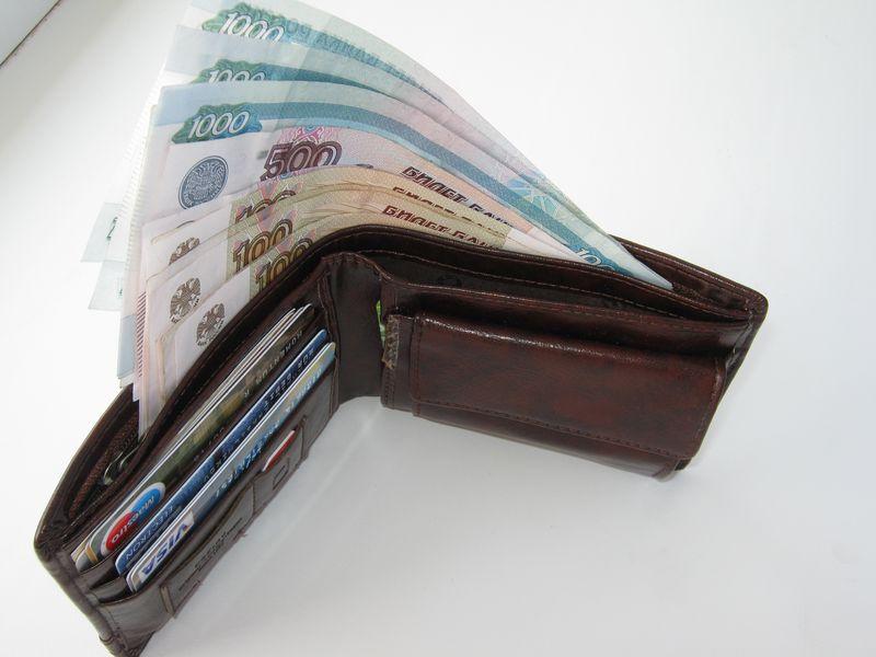 Средняя зарплата вУдмуртии вначале лета составила 27,8 тыс. руб.
