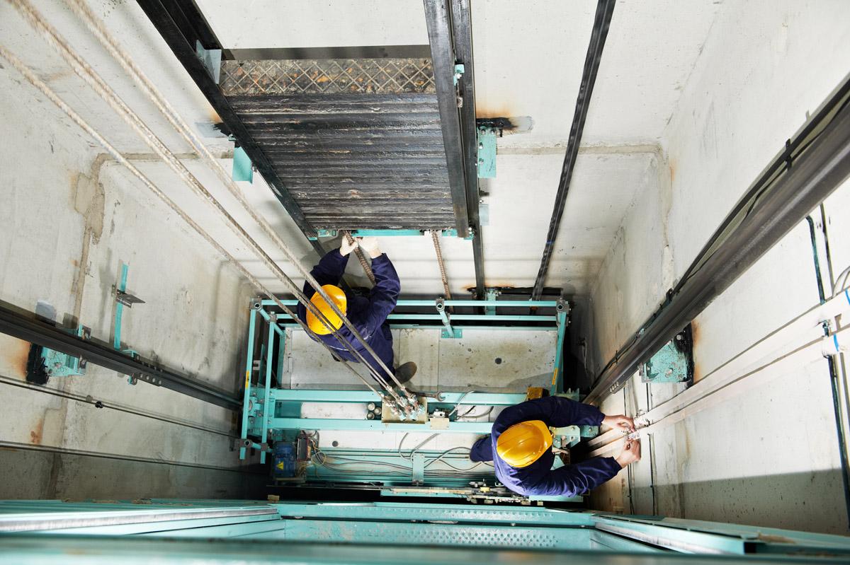 Фото: vault.com