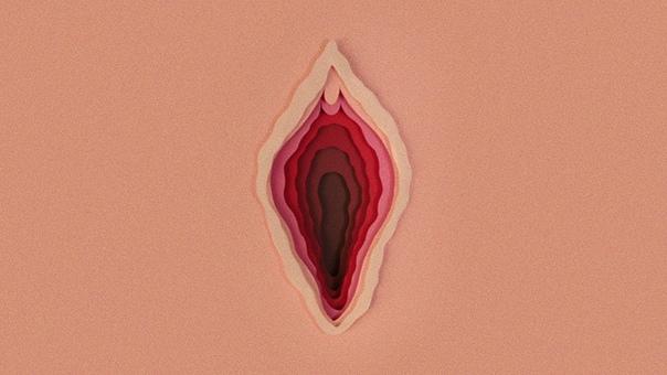 Источник: vk.com/vagina_monologues