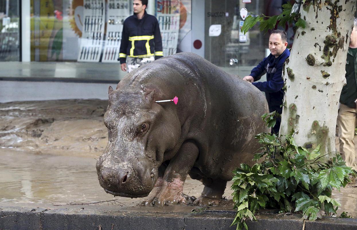 Фото: Reuters/Scanpix