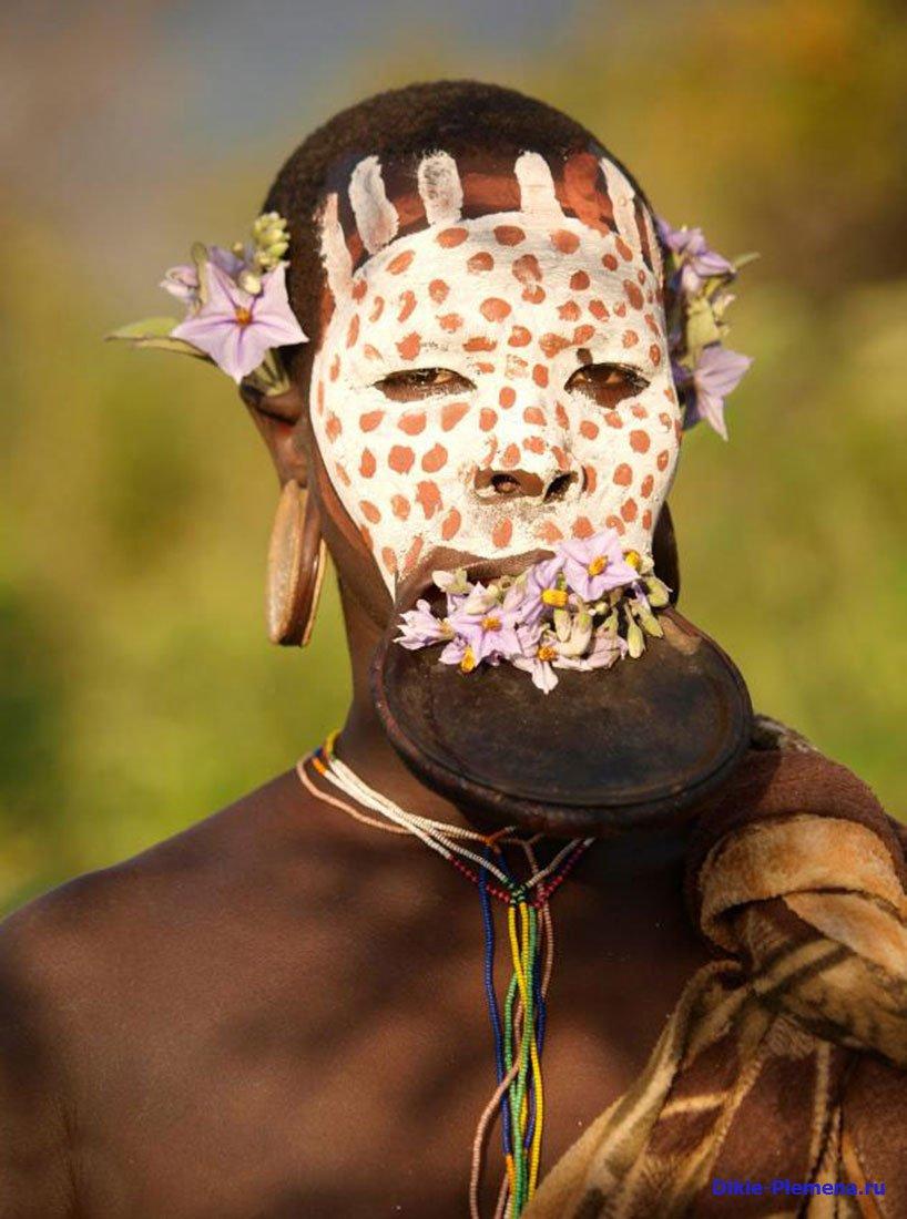 Фото: dikie-plemena.ru