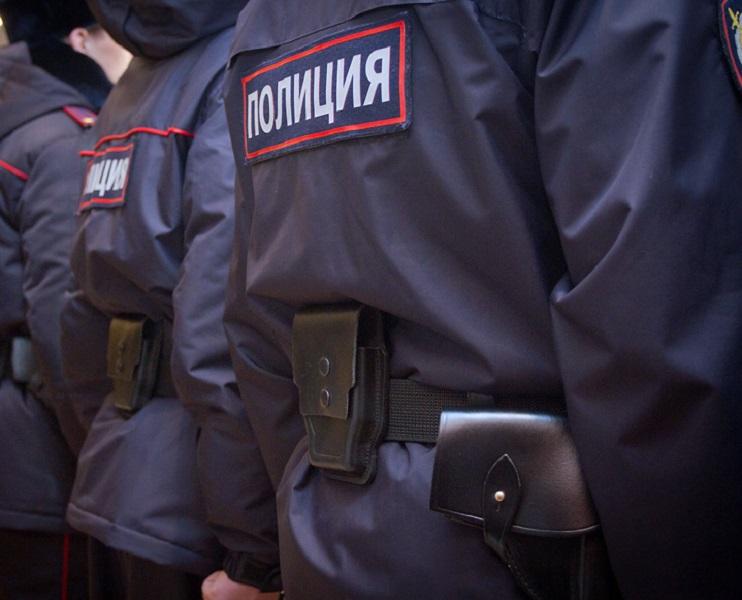 Фото: 8-metro-police.ru