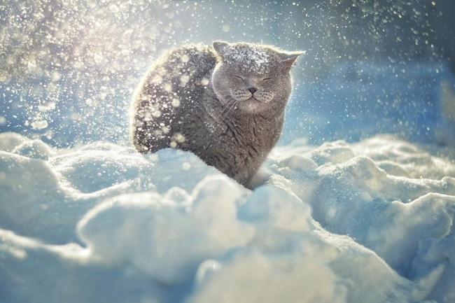 Фото: adme.ru