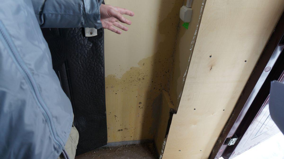 Жильцы сообщили, что буквально перед приездом «Народного контроля» строители в подъезде пытались прикрыть плесень фанерой, но не успели. Фото: © «ДЕНЬ.org»