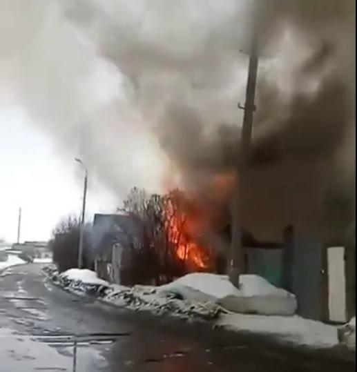 Фото: скрин с видео (ИГГС)
