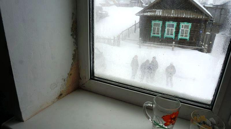 На стенах почти такой же конденсат, как и на окнах. Фото: © «ДЕНЬ.org»