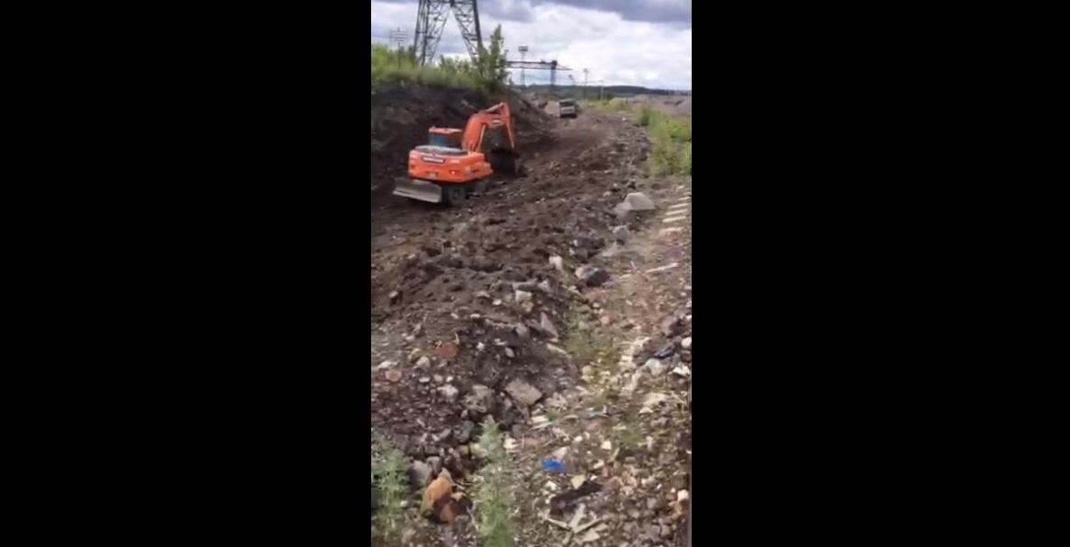 Фото: cтоп-кадр видеоролика, предоставленного ООО «Вита»