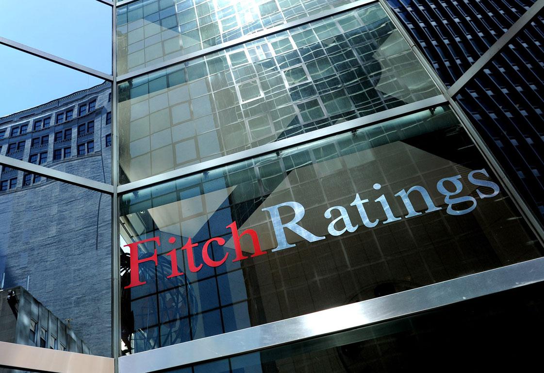 Fitch - бескомпромиссный диагност. Фото:kievpravda.com