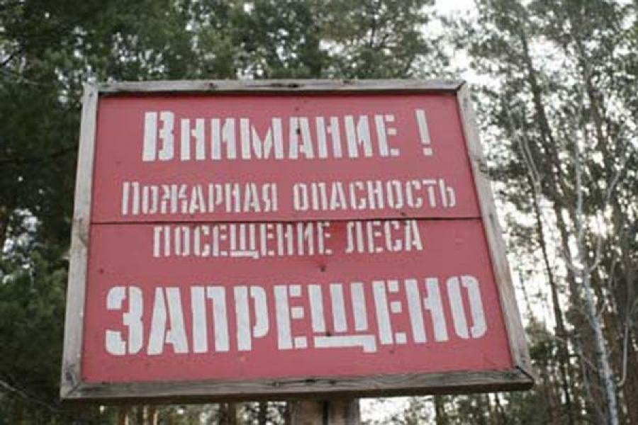 Фото: sakhalife.ru