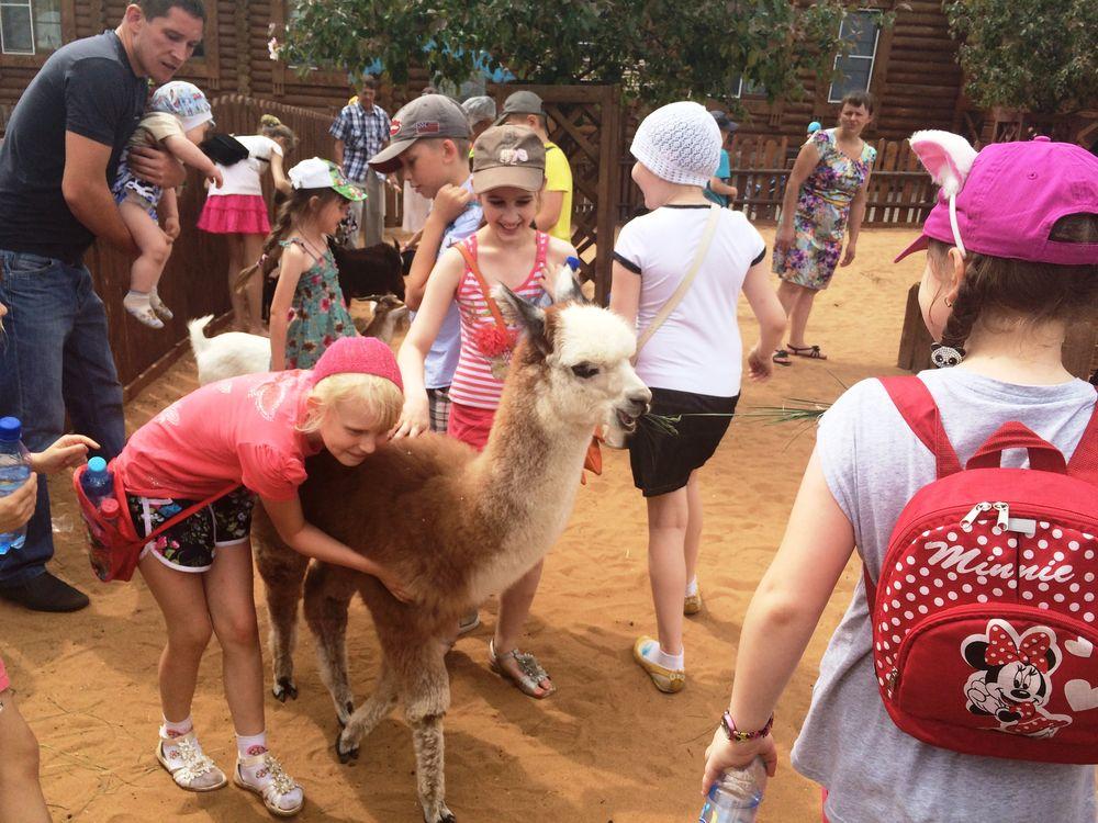 Контактный зоопарк. Фото: ©День.org