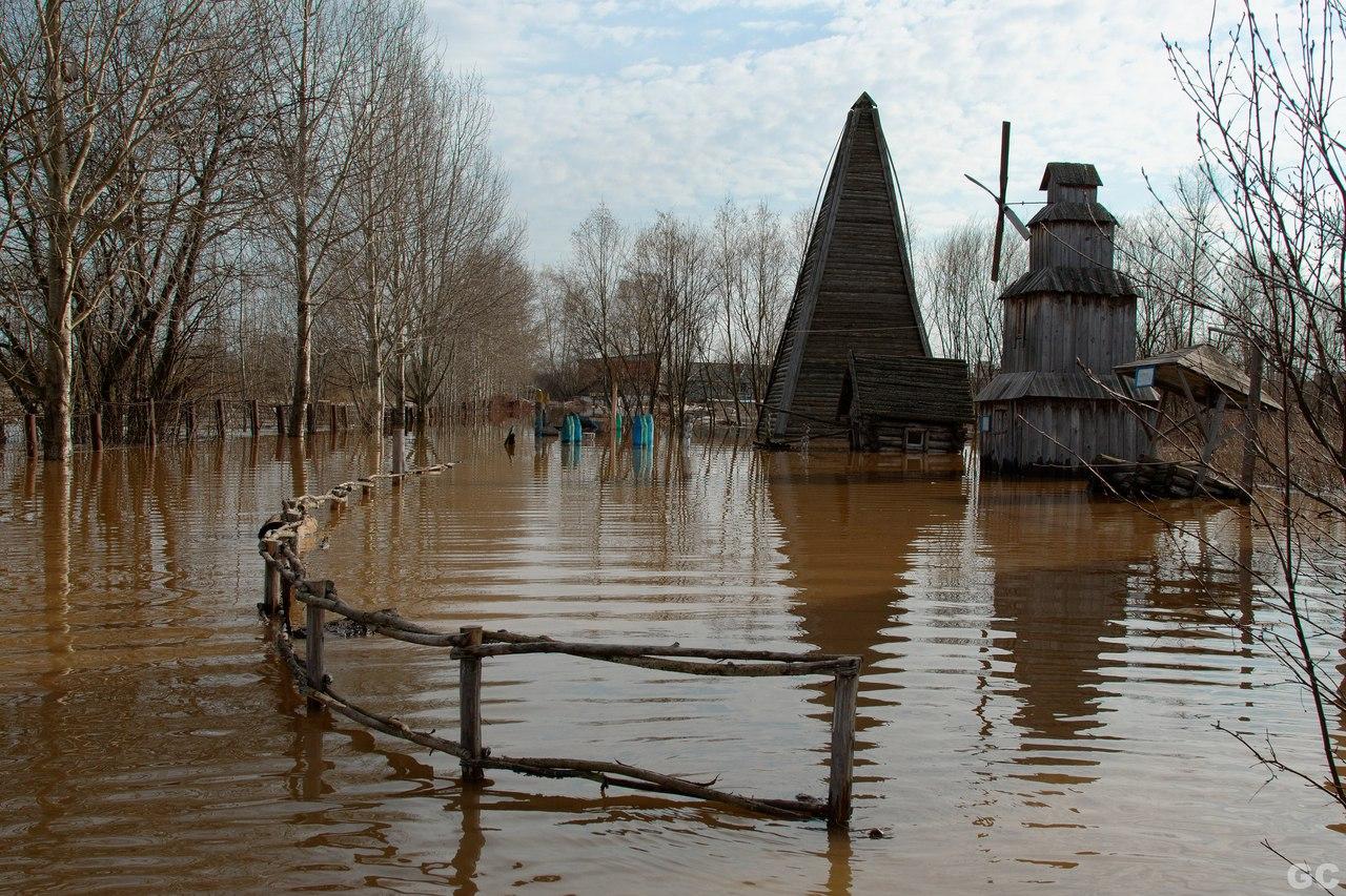 В левой части фото была дорога к приюту. Фото: vk.com (Город Глазов)