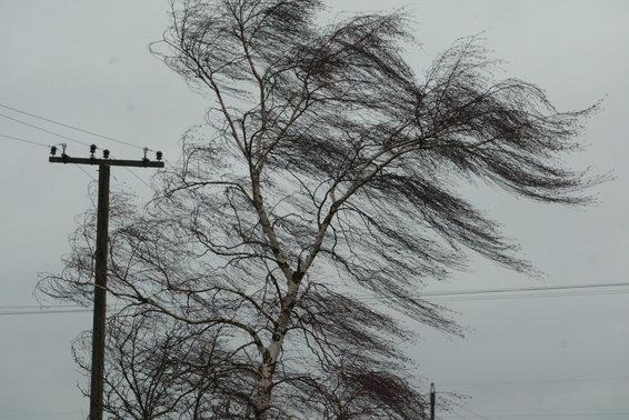 Усиление ветра ожидается вИжевске 20апреля