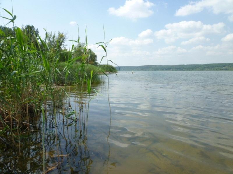 Фото: omskregion.info