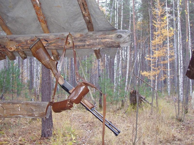 ВУдмуртии раненый медведь растерзал охотника