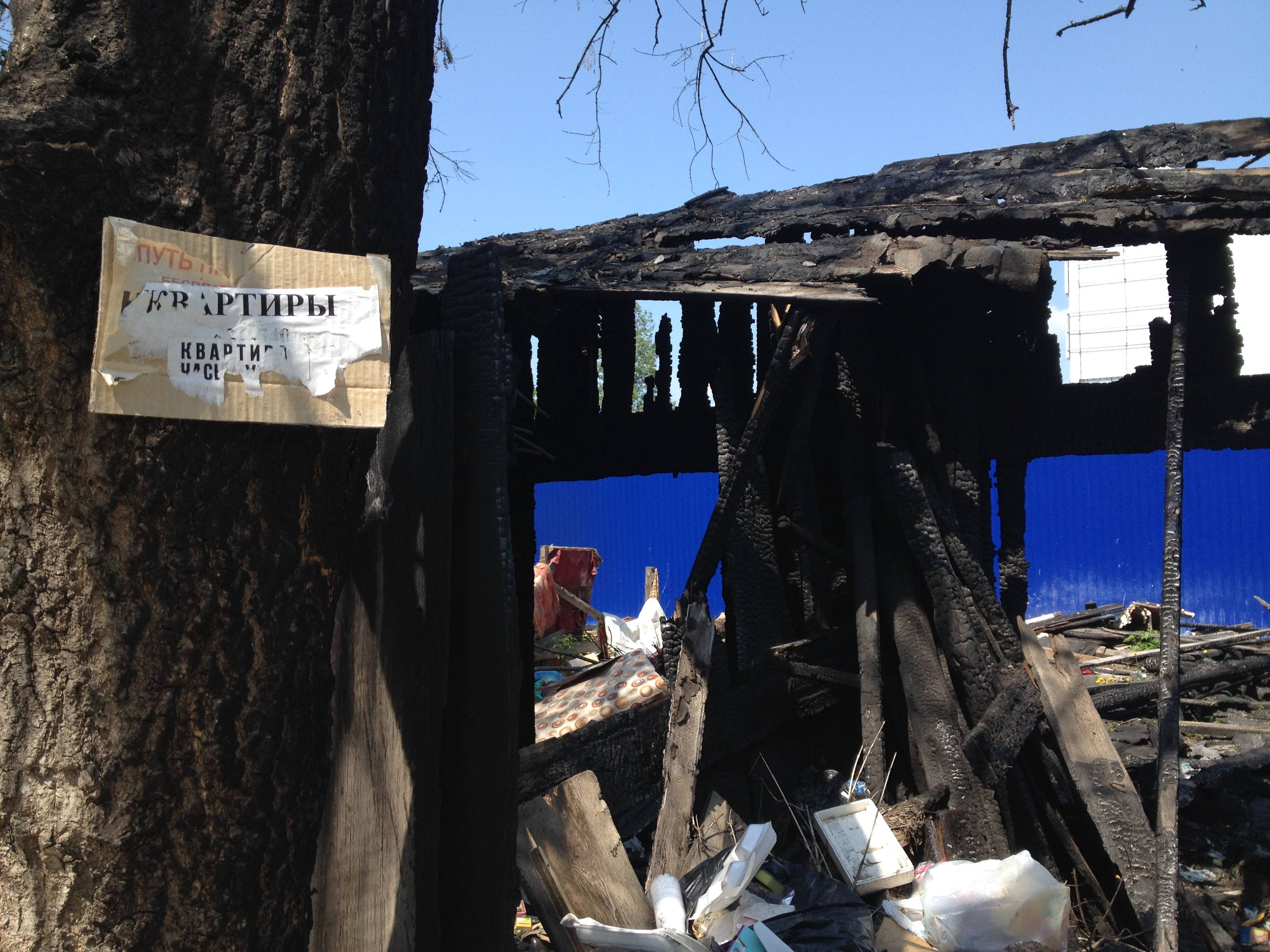 Сжигаем «деревяшки» — строим квартиры, но какие? Фото: © «ДЕНЬ.org»