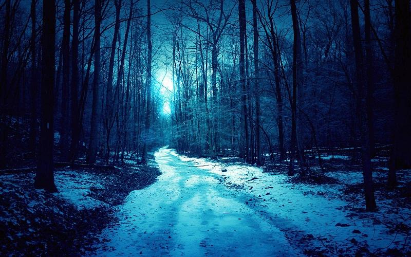 Фото: gotowall.com