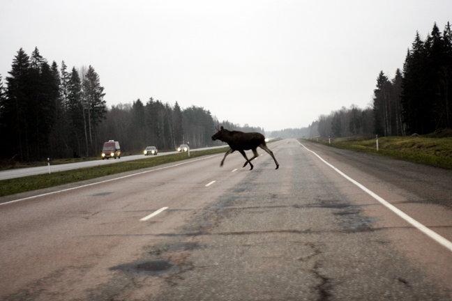 Фото: newsy-world.ru
