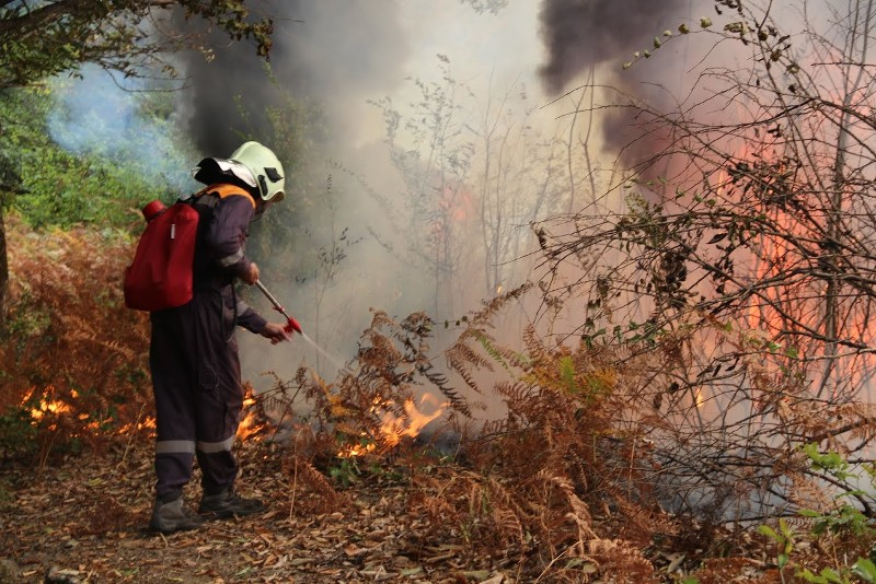 Пожароопасный сезон вУдмуртии объявили закрытым