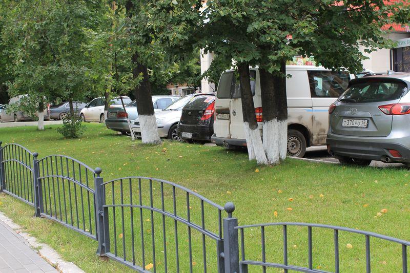 Некоторые организации содержат газон в хорошем виде. Фото ©День.org