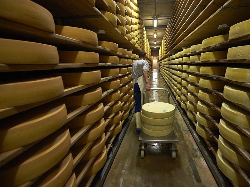 Четверо граждан Удмуртии украли с учреждения сыр на2 млн руб.