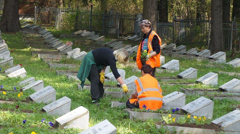 Единственный, кто на 100% выполнил свои обязательства по содержанию памятников, — это «Горзеленхоз». Фото: © «ДЕНЬ.org»