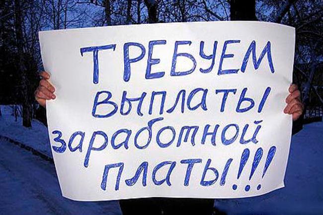 Фото: kam24.ru