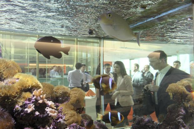 В офисе Bloomberg. Фото: finparty.ru