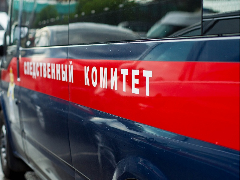 Фото: ngnovoros.ru