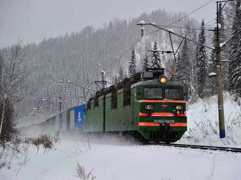 2-х лосей сбил поезд вЗавьяловском районе Удмуртии ФОТО