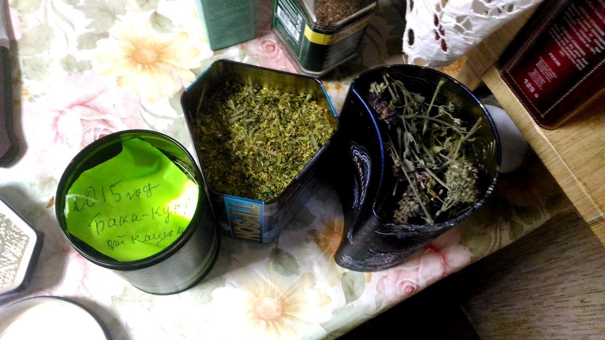 Елизавета Ивановна каждое лето запасает 50 видов трав для целебных настоев. Фото: © «ДЕНЬ.org»